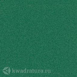 Линолеум Tarkett (Primo Plus) Cpri 312